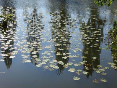 05 reflecting