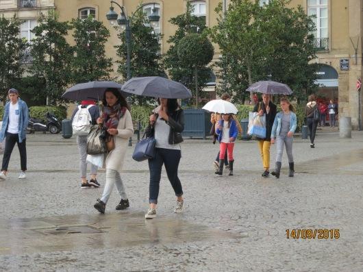 umbrellas of the common