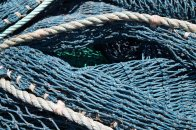 chain 5 net