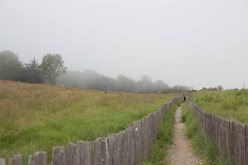 26-follow-the-path