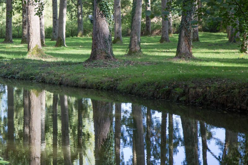w5-reflection